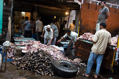 Pile of Meat (Mathijs Buijs) Tags: street old india feet truck canon eos pig cow asia cows legs pavement delhi working stomach meat butcher pile pigs 7d chandni chowk livers
