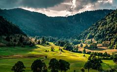 Menzenschwander Tal, Schwarzwald