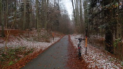 gaaanz anders als bis Do geglaubt ... (twinni) Tags: salzburg bike austria sterreich mtb cannondale biketour rohloff fiftyfifty mw1504 22112015