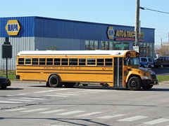 Metamora Township High School District No. 122 (Nedlit983) Tags: blue school bus bird vision