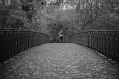 Kelvin Walkway Fujian 35mm CCTV (Caledonia84) Tags: bridge autumn portrait leaves 35mm bokeh glasgow sony cctv walkway soviet kelvin swirl f2 fujian russian 58mm botanicgardens helios f17 44m4 a6000