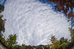 Cloud over Osaka castle (nak.viognier) Tags: osakacastlepark 大阪城公園 olympusepl3 lumixgfisheye8mmf35