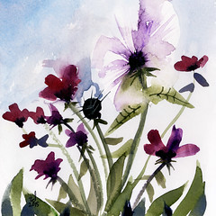Pansy Floral 7 (Tonya Doughty) Tags: flowers art floral