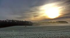 Landschaft im Nebel (Wunderlich, Olga) Tags: nebel feld rgen landschaft wald sonnenaufgang inselrgen nebellandschaft nebelstimmung