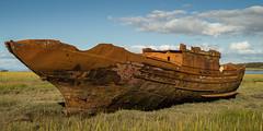 IMGP6785 (Andrew_5J) Tags: pentax k30 wreck shipwreck sea marsh fleetwood estuary rust abandoned mud sinking