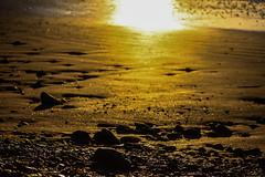Light up the beach (Costigano) Tags: beach sand dof bokeh outdoor pepple canon beauty canoneos sunlight light depthoffield landscape morning