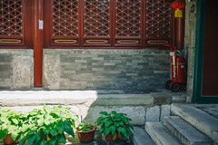 Summer Serenity Deep in an Old Buddhist Temple (sunnywinds*) Tags:       beijing china summer serene tranquil serenity tranquility green buddhist temple   leica summilux