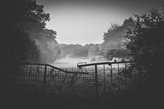 Mysteries (Christian Wilmes) Tags: black white schwarzweis blackandwhite tor gate fog foggy mystery mist morning dark geheimnis verschlossen closed sony dsc rx100