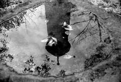 (depth of repose) (Dinasty_Oomae) Tags: leica leicaiiia leica3a  iiia 3a   blackandwhite blackwhite monochrome bw outdoor   hiroshima   kure  cenotaph  watersurface