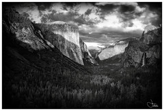 Down-Valley (Harned-Pix) Tags: blackandwhite yosemite nationalpark black white canon canon6d nature forests valley park scenic scenery iconic artistic