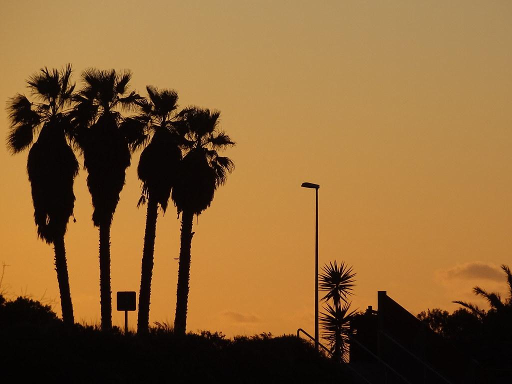 California Vibes Tris Martin Tags Beautiful Sunset Moon Tumblr Flowers Architecture White Orange