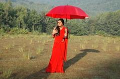 South Actress Deepika Das Hot in Red Sari Photos Set-5 (3)