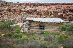 Wolfe Cabin (Serendigity) Tags: utah landscape desert archesnationalpark nature nationalpark heritage unitedstates usa logcabin outdoors