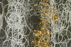 DUI_8205r (crobart) Tags: world treads festival oakville cloth fabric fibre textile art artwork