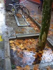 Tardor (2) (calafellvalo) Tags: otoo autumn fall automne herbst ocher reddle ocre ocker viedos vineyard weinberg vignoble rouge red calafellvalo madroo tardor