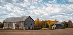 Big Barn, Little Barn (Frank Cardoze) Tags: wisconsin doorcounty olympus omd em5 markii fall zuiko 1240 colors barn farm
