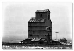 Moorcroft, Wyoming (Northern Pike) Tags: moorcroft wyoming mono grain elevator