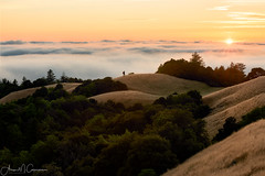 Opt Outside (Aron Cooperman) Tags: aroncooperman california fog june2016 landscape longridge mountains northerncalifornia openlightphoto sunset nikond800 losaltos ca hiker sunstar escaype outdoors nature