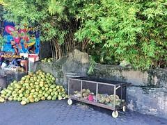 ヤシの実 (k0tok0) Tags: mobile malaysia マレーシア 食 food