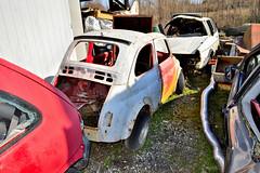 fiat 500 (riccardo nassisi) Tags: auto abbandonata abandoned rust rusty relitto rottame ruggine ruins rottami scrap scrapyard epave piacenza pc fiat officina decay urbex
