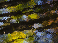 (amy20079) Tags: nikond5100 newengland maine fall autumn water reflections abstract trees leaves painterly river nature movement