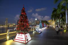 Marina Bay Countdown Singapore (MBCS) 2017 (gintks) Tags: gintaygintks gintks singapore singaporetourismboard singapur sg51 yoursingapore exploresingapore bounceofffiesta2016 wishingcharms wishingtrees marinabaysands bayfronteventspace