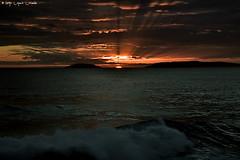 Paxarias sunset sea (Iago Lpez Losada) Tags: autumm amor animal artistic nikon nikond750 nature nubes naturaleza nofilters nikkormat invierno spain sun sanxenxo square squareformat sunset sea love lights live libertad luces life