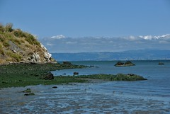 The Bay (lc650) Tags: landscape photography bayarea nature naturephotography cliff sky california west coast sfo