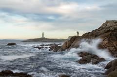 Tarde de pesca (Emilio Rodrguez lvarez) Tags: corua galia mar roca marina oceano sea torre hercules canon paisajes landscape galicia color