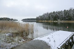 Skatenmyran november 2016 (Anders Sellin) Tags: 2016 lantstlle sverige sweden stockholm skrgrd archipelago baltic sea stersjn november hst sn kallt cold