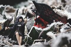 The Incantation of Jack Frost (Claudia G. Kukulka) Tags: nuray bilara elves elfen schleich action figure actionfigure jack frost jackfrost vterchenfrost
