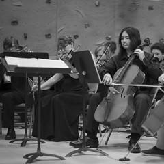 f1.8 (kuujinbo (-_-')) Tags: voigtlanderheliar75mmf18 stringorchestra cello concert