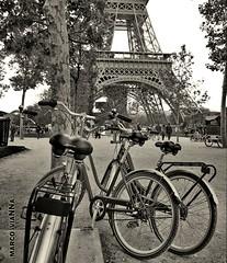 Bices (m@®©ãǿ►ðȅtǭǹȁðǿr◄©) Tags: toureiffel torreeiffel campodemarte champdemars bices bicicletas paris france monocromo bw parque park olympusepl1 zuikoed14÷42mmf35÷56 marcovianna marcoviannafotógrafo m®©ãǿ►ðȅtǭǹȁðǿr◄©