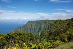 Kalalau Valley Lookout, Kauai (FerencSeitz) Tags: ferencseitzphotography kalalau valley lookout kauai nikon nikor d800e hawaii kalaluvalleylookout