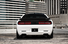 Exclusive Motoring Dodge Challenger Hellcat (Exclusive Motoring) Tags: auto white car paint miami wheels system sound dodge pearl custom job audio exclusive doral challenger hellcat motoring srt8 forgiato