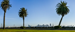 backlot (pbo31) Tags: sanfrancisco california city blue summer urban panorama 3 color skyline palms nikon treasureisland large august panoramic stitched 2015 boury pbo31 d810