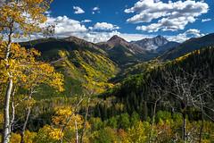 Autumn palette (Bill Bowman) Tags: autumn colorado fallcolors aspen elkrange capitolpeak mountdaly capitolcreek