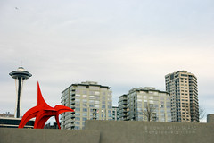 an eagle & a needle (mohini :: mangopowergirl.com) Tags: seattle park city autumn red sky urban sculpture art fall buildings grey evening apartments sam eagle cloudy overcast scene needle calder spaceneedle seattleartmuseum alexandercalder olympicsculpturepark nx500