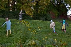 Scarecrow convention (estenvik) Tags: autumn oktober fall oslo norway norge scarecrow hst sagene 2015 fugleskremsel estenvik erikstenvik vyenvollen
