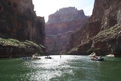 Grand Canyon 2015 558