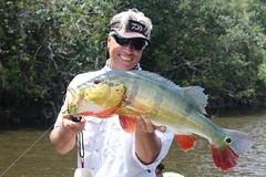 Amazonia 2012 (3)