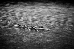 Mendota Crew (mfhiatt) Tags: blackandwhite lake wisconsin row madison crew mendota day295 day295365 365the2015edition 3652015 22oct15 img07061015jpg