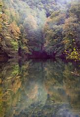 Yedigller 10 ; Brotherhood of color (oskaybatur) Tags: autumn trees lake reflection nature colors turkey landscape october heaven pentax trkiye bolu turkei 2015 ekim sonbahar yedigller sigma1770 justpentax pentaxart pentaxkr oskaybatur