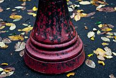 Lamp Post Base & Leaves (Orbmiser) Tags: park autumn fall wet lamp leaves rain oregon portland leaf nikon base d90 55200vr