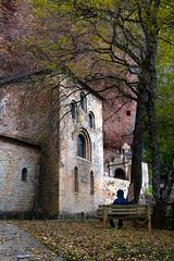 Contemplación (miguelerele) Tags: huesca monasterio pirineo sanjuandelapeña