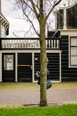 _DML1484 (duncen.mcleod) Tags: ren marken zaanseschans molens paardvanmarken oudehuisjes
