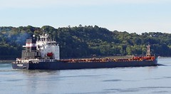 Algona Guardian (Jacques Trempe 2,440K hits - Merci-Thanks) Tags: quebec canada stefoy ship navire fleuve river stlaurent stlawrence vraquier bulker algoma guardian
