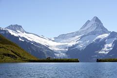 What a day... (JohannesMayr) Tags: schweiz switzerland kanton bern see lake bachalpsee grindelwald first alpen alps gletscher berg schreckhorn aussicht overlook view felsen glacier