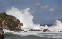 4m swell || North Curl Curl (David Marriott - Sydney) Tags: north curl sea seascape wave ocean pool sydney nsw australia power powerful swell storm