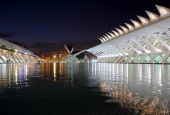 Spagna 10 (pjarc) Tags: europe europa spagna spain espana valencia 2016 september settembre city citt architectures architetture calatrava luci lights sera riflessi reflex acqua water cielo sky blue colors colori foto photo digital nikon d40 dx noff lens zoom nikkor 18200mm prospettiva perspective